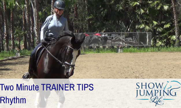 Equestrian Training Scale: Rhythm – Video