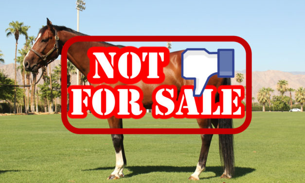 Facebook Prohibits Animal Sales