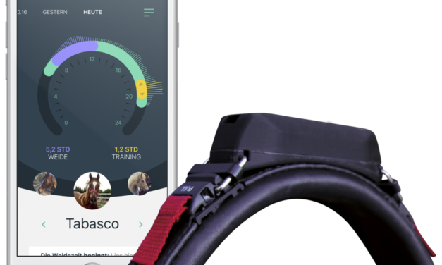 Wearable Technology Improves Health, Training Of Horses