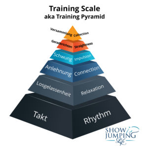 Equestrian Training Scale