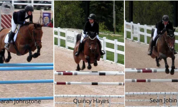 What's Your Show Jumping Training Philosophy?
