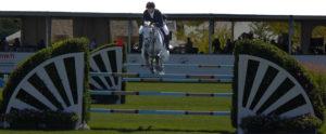Show Jumping Life Header Image