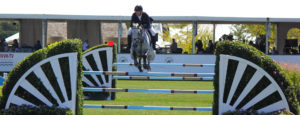 Show Jumping Life Fullwidth header background
